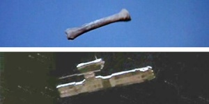 L'os et le vaisseau